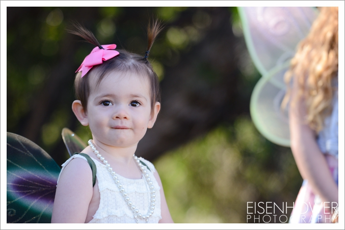 fairies_48